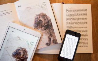E-Book-Start